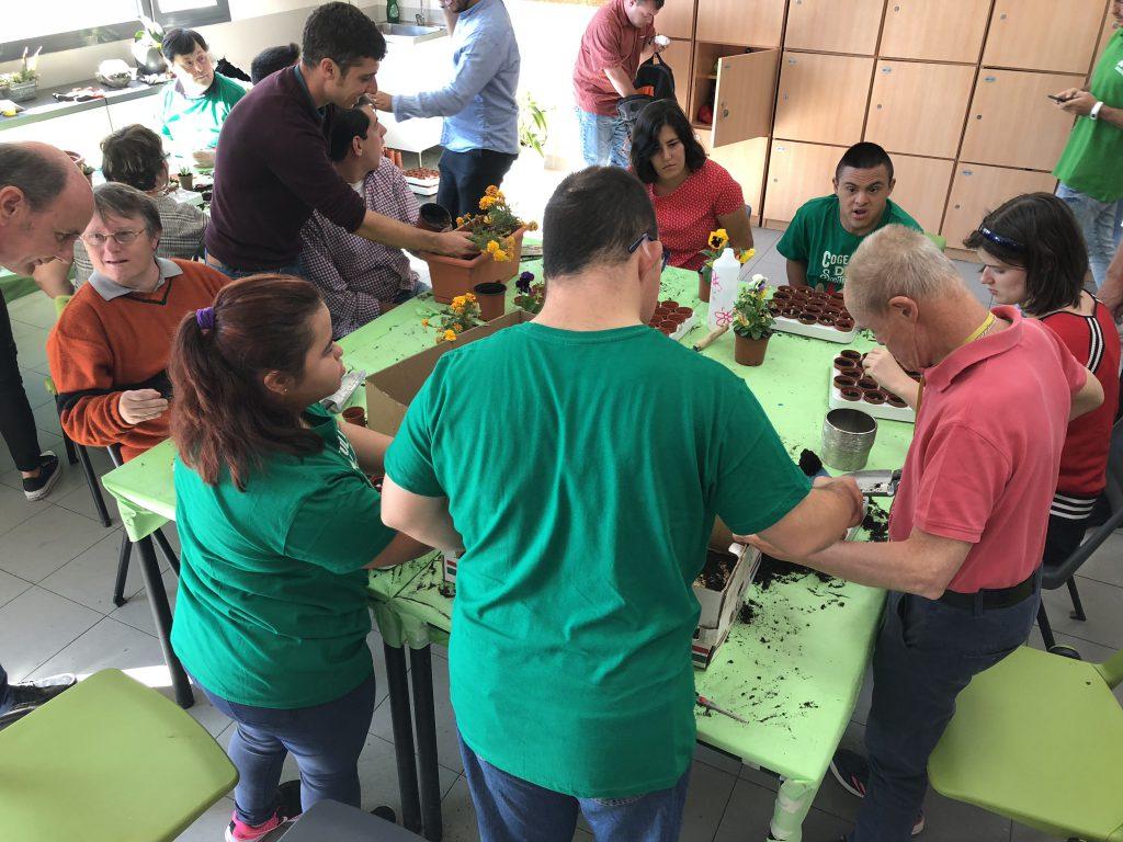 Talleres en la Fundación Down Madrid